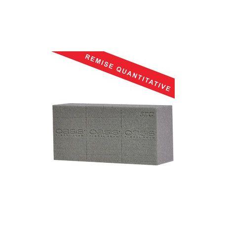Carton 20 briques mousse sèche OASIS