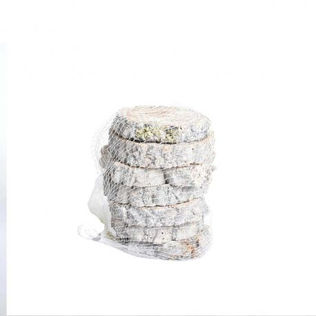 Rondelles de bois cipo estrella blanchi 6 pcs