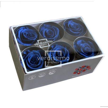 Bouton de rose préservée - Bleu Royal Dia 5