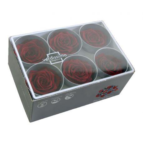 Bouton de rose préservé bordeaux D5,5cm Boîte de 6