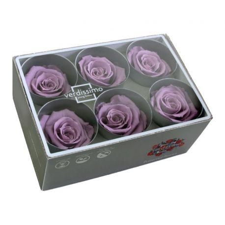 Bouton de rose préservé lilas D5.5cm Boîte de 6