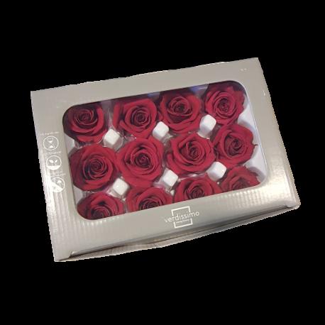 Mini rose préservée Bordeaux x12 pièces