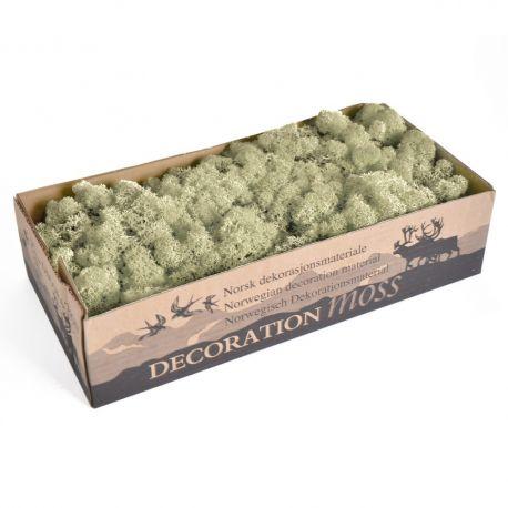 Mousse séchée couleur blanchie - 500 g
